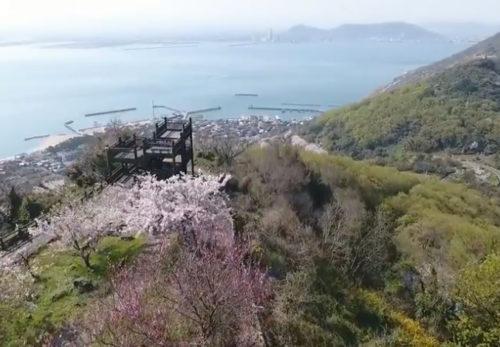 ドローン撮影 高松市女木島の春・桜